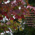 Romans 8:18-19 by Rainydayphotos