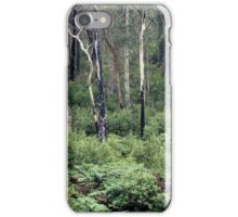 Trees of Silverband Falls iPhone Case/Skin