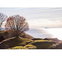 Sunset lonely tree, Finland/Helsenki - Suonmelina Photographic Print