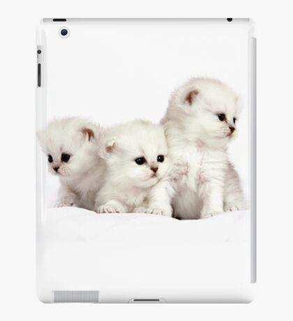 SNOWBALLS iPad Case/Skin