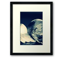 ONION Framed Print