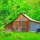 Going Green Country Style by Grinch/R. Pross