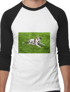 Pit Bull T-Bone Puppy Men's Baseball ¾ T-Shirt