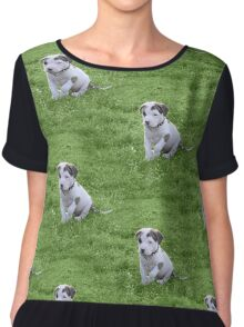 Pit Bull T-Bone Puppy Chiffon Top