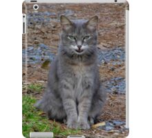 Ma Ma In Mid-Meow iPad Case/Skin