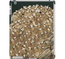 Gannet Rock iPad Case/Skin