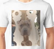 Pitbull Stuck by Byron Croft Photography Unisex T-Shirt