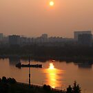 Golden Morning by karina5
