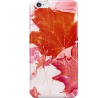 Pink Autumn Leaves iPhone Case/Skin