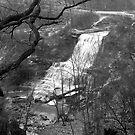 Hamilton Falls by Larry Llewellyn
