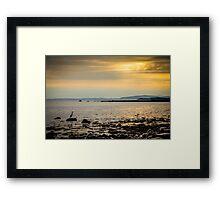 Heron on the Beach at Sunset Framed Print