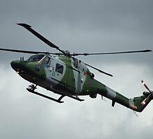 Chopper by Ed Hemming