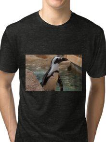 Polly Tri-blend T-Shirt