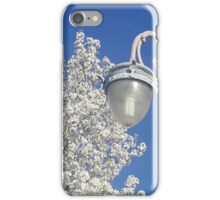 Environment classy iPhone Case/Skin