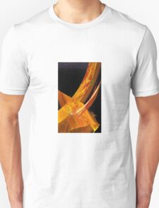Gate of India T-Shirt