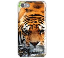 bored tiger iPhone Case/Skin