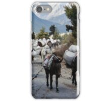Donkeys iPhone Case/Skin