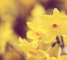 Happy Spring - JUSTART © by JUSTART