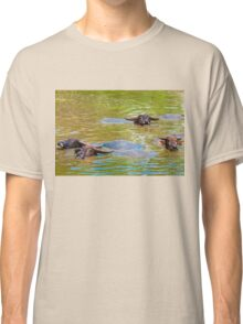 Herd of Thai buffalo cooling in during the day Classic T-Shirt