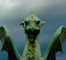 Dragon Between Storms, Ljubljana by Bob Ramsak