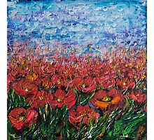 Red Poppy Field - by Lena Owens Photographic Print