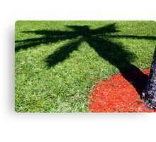 Palm Tree Shadow on Grass Canvas Print