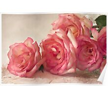 Rosy Elegance - Digital Watercolor  Poster