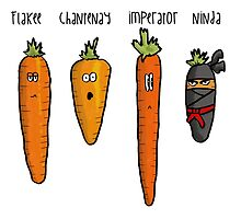 Types of carrot by Jenna Thompson