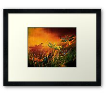 Dragonfly...Towards The Light 2 Framed Print