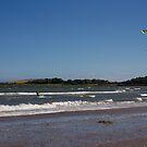 Kite Surfer by Jon Lees