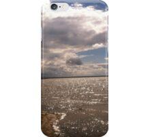 Caseville iPhone Case/Skin