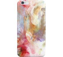 Summer Delight iPhone Case/Skin