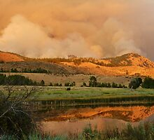 Forest Fire At Sunset by Randy Richards
