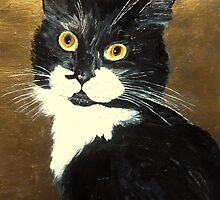 Tuxedo Cat by nuancen
