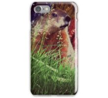 2015. Photography. By. Will Divinely Create/Animal_Groundhog iPhone Case/Skin