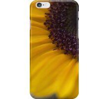 sunflower 2 iPhone Case/Skin