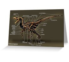 Velociraptor Skeleton Study Greeting Card