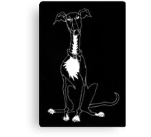 greyhound in black and white  Canvas Print