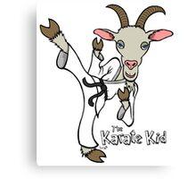 The Karate Kid Canvas Print