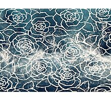 Rose Water Photographic Print