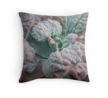 """Echeveria Gibbiflora (a """"Unique"""" Type!) Throw Pillow"""