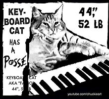 Keyboard Cat Posse by keyboardcat