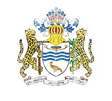 Guyanese Coat of Arms Guyana Symbol Photographic Print