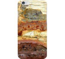 Rugged Terrain iPhone Case/Skin