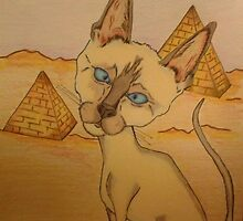 Siamese Cat in Egypt by KenHadad