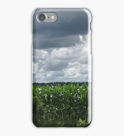 In the Good Old Summertime iPhone Case/Skin