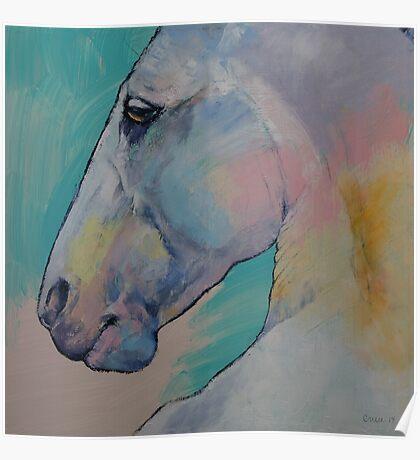 Lipizzan Stallion Poster