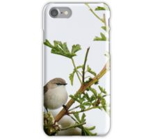 Wren iPhone Case/Skin