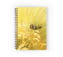 Yellow & Black Bug Spiral Notebook