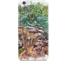 The Atlas Of Dreams - Color Plate 169 iPhone Case/Skin